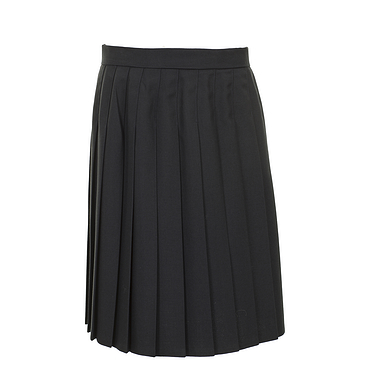 Navy Long Pleated Skirt