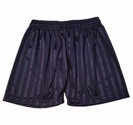 Shadow Stripe Navy Shorts